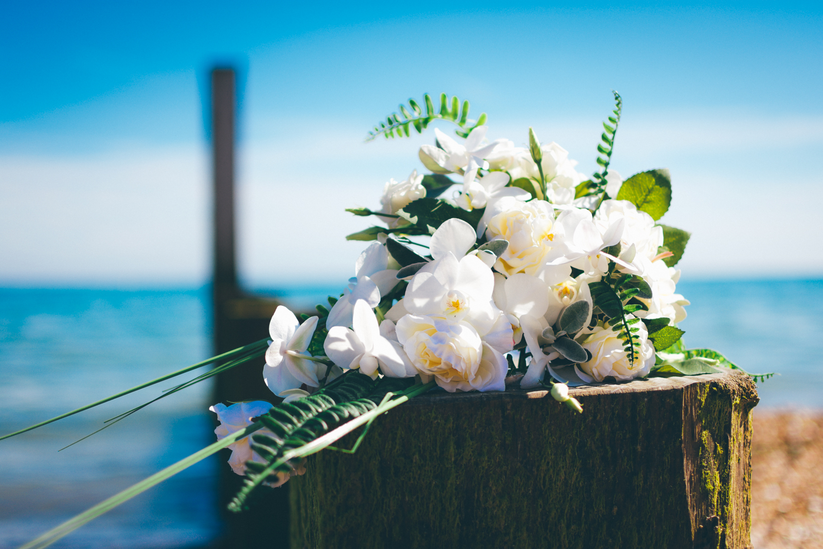 white orchid beach wedding